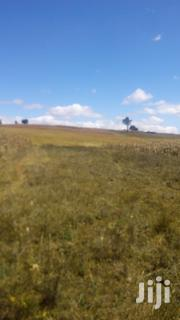 Nyahururu Land For Quick Sale 5acres 3m | Land & Plots For Sale for sale in Nakuru, Subukia