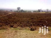 4 Acre Land On Sell | Land & Plots For Sale for sale in Nakuru, Molo
