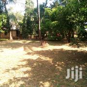 1¼ Acre Plot on Sale at Utange. | Land & Plots For Sale for sale in Mombasa, Shanzu