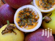 Purple Passion Fruits Seedlings | Feeds, Supplements & Seeds for sale in Kiambu, Hospital (Thika)