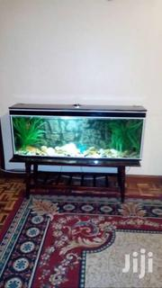Fish Tank 160lits | Other Animals for sale in Nairobi, Parklands/Highridge