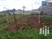 Juja Kenyatta Rd Chai Estate 1 /8acre Plot Controlled at 4.7m | Land & Plots For Sale for sale in Kiambu, Kalimoni