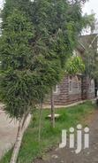 LANDSCAPING, Give Us A Call, We Come Do It For You, | Landscaping & Gardening Services for sale in Ruai, Nairobi, Kenya