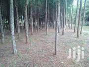 LAIKIPIA  COUNTY  KWA - WANJIKU   1  ACRES | Land & Plots For Sale for sale in Laikipia, Marmanet