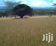 100 Acres Of Land In Ndabibi, Naivasha | Land & Plots For Sale for sale in Nakuru, Naivasha East