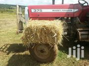 Hay For Sale | Feeds, Supplements & Seeds for sale in Nyandarua, Karau