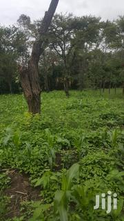 Land for Sale | Land & Plots For Sale for sale in Kajiado, Ongata Rongai