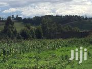1acre Land | Land & Plots For Sale for sale in Kiambu, Kikuyu