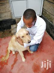 Veterinary Surgeon | Pet Services for sale in Nairobi, Karen