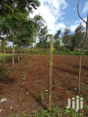 Prime 1/8 of an Acre Kibiko at 2.9million | Land & Plots For Sale for sale in Kajiado, Ngong