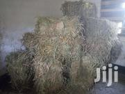 Hay Production | Feeds, Supplements & Seeds for sale in Siaya, North Uyoma