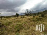 100 Acres Naivasha (Ndabibi/Kongoni) | Land & Plots For Sale for sale in Nakuru, Naivasha East