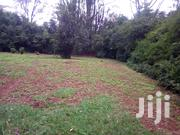 Two and a Half Acres in Mushroom Area Kiambu | Land & Plots For Sale for sale in Kiambu, Township E