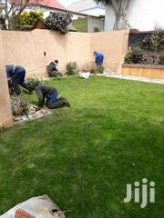 Lawn & Garden Services/Experienced Professionals/Affordable, Reliable | Landscaping & Gardening Services for sale in Nairobi, Utalii
