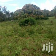 Land on Sale Matsangoni | Land & Plots For Sale for sale in Mombasa, Majengo