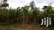 Plot For Sale | Land & Plots For Sale for sale in Kajiado, Kaputiei North