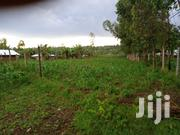 150x100 Plot on Sale in Rongo,Gracer Area.1.2M | Land & Plots For Sale for sale in Migori, Central Kanyamkago