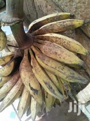 Organic Plantain | Meals & Drinks for sale in Nairobi, Nairobi Central
