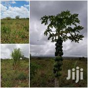 Land In Marereni | Land & Plots For Sale for sale in Mombasa, Tudor