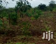Land for Farming | Land & Plots For Sale for sale in Murang'a, Ithanga