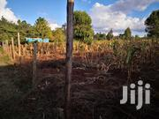 Quarter Acre Plot Muguga Kikuyu Kiambu. | Land & Plots For Sale for sale in Kiambu, Kikuyu