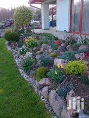 Brilliant Landscapes For You | Landscaping & Gardening Services for sale in Nairobi, Embakasi