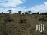 Amica Ventures 1/4acre Plots Kiawara Nyeri | Land & Plots For Sale for sale in Nyeri, Gatarakwa