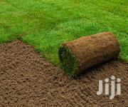 Instant Lawn Grass | Garden for sale in Kiambu, Ruiru