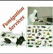 Pest Control Service | Cleaning Services for sale in Kakamega, Bunyala East