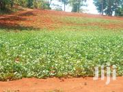 6acres With River Frontage | Land & Plots For Sale for sale in Kirinyaga, Kariti