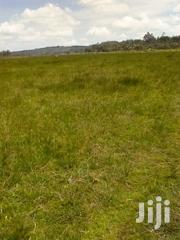 5 Acres Mwiciringiri, Naivasha | Land & Plots For Sale for sale in Nakuru, Naivasha East
