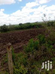 1/4 And 1/8 Pieces Of Land | Land & Plots For Sale for sale in Kajiado, Keekonyokie (Kajiado)