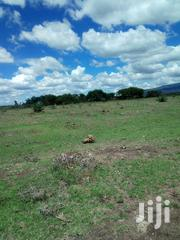 Thika Kiganjo 40×85 | Land & Plots For Sale for sale in Nairobi, Nairobi Central