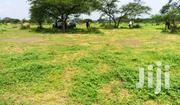 Oletepesi Plains | Land & Plots For Sale for sale in Kajiado, Magadi