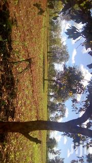 Prime Land for Sale | Land & Plots For Sale for sale in Embu, Mbeti South