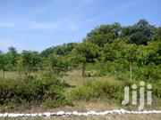 Quatre Acre Beach Plot In South Coast For Sale | Land & Plots For Sale for sale in Kwale, Tiwi