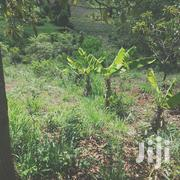 Quarter in Majimbo | Land & Plots For Sale for sale in Embu, Mbeti North