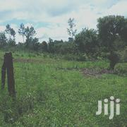 50 By 100 In Mutunduri | Land & Plots For Sale for sale in Embu, Mbeti North