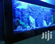 Aquarium Maintenance-cleaning | Pet Services for sale in Nairobi, Nairobi Central