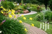 Reliable/Affordable/Professional Landscaping Service | Landscaping & Gardening Services for sale in Nairobi, Parklands/Highridge