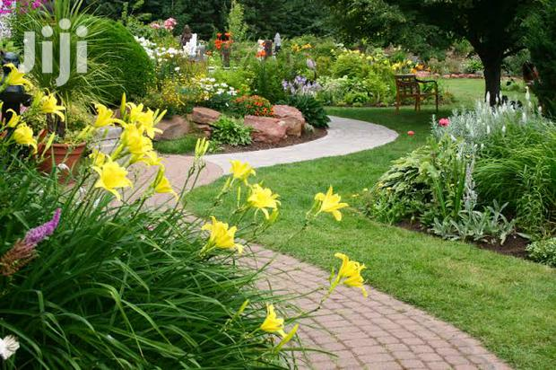 Archive: Reliable/Affordable/Professional Landscaping Service