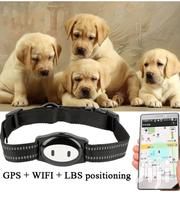 Dog Leashs,Dog Trackers And Pet Accessories. | Pet's Accessories for sale in Nairobi, Embakasi