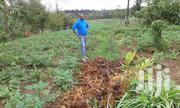 2.95 Acres of Land   Land & Plots For Sale for sale in Nyandarua, Central Ndaragwa