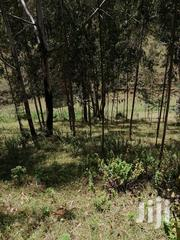 Agricultural Land for Sale | Land & Plots For Sale for sale in Nyeri, Mwiyogo/Endarasha