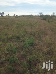 Land on Sale | Land & Plots For Sale for sale in Siaya, South Sakwa (Bondo)
