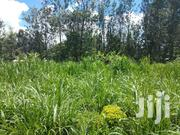 Nyeri Tetu Gathuthi 8 Acres Tea Land at 1.5m | Land & Plots For Sale for sale in Nyeri, Kamakwa/Mukaro
