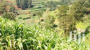 Freehold Land With Clean Title | Land & Plots For Sale for sale in Embu, Kithimu