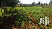 Prime Land Ihururu Nyeri | Land & Plots For Sale for sale in Nyeri, Rware