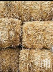 Baled Hay For Sale | Feeds, Supplements & Seeds for sale in Bungoma, Marakaru/Tuuti