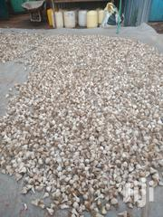 Garlic Seeds For Sale | Feeds, Supplements & Seeds for sale in Nairobi, Nairobi West